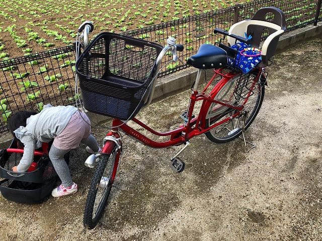 取り外し 自転車 カゴ